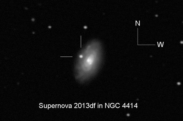 Supernova 2013df  - foto: Joseph Brimacombe