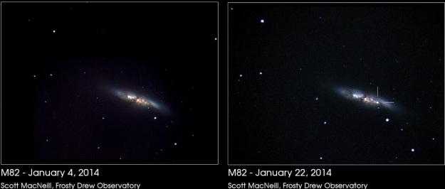 supernova-M82-Scott-MacNeill