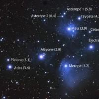O Plejadama, najpoznatijem zvezdanom jatu